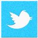 twitter-icon-sm